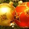 """""""Gans wie zu Hause"""" Weihnachtsgans vom Profi auf den Tisch"""